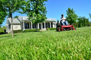 lawn care lees summit mo
