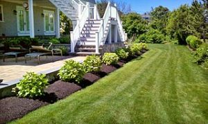 lawn care lees summit fertilizing