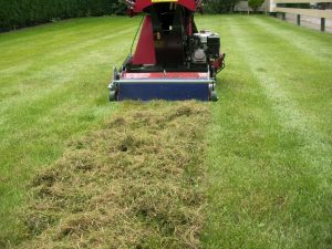 lawn guide dethatching