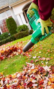 Fall lawn fertilizer tips for lawn maintenance