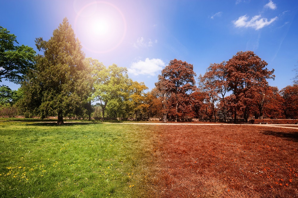 fall lawn maintenance schedule
