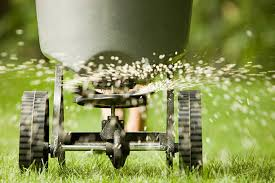 fertilizing your lawn