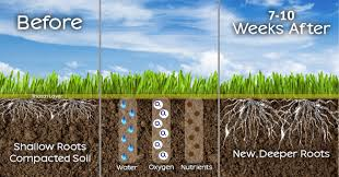 lawn and garden guide for aeration