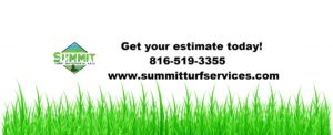lawn care summit turf services