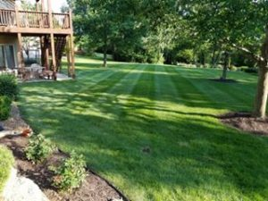 lawn care patterns lees summit
