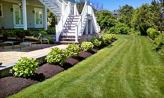 best lawn care services company