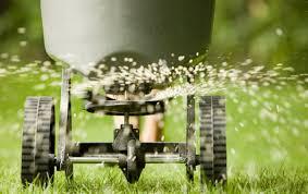 lawn care lees summit fertilizing