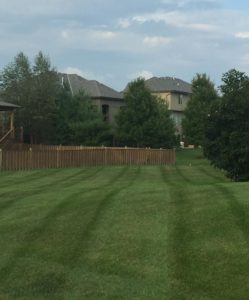 patternits lawn care lees summit
