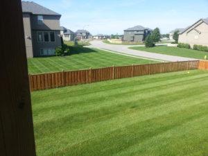 spring-lawn-care-checklist