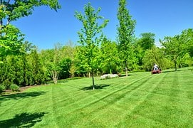 Lawn Care Service Provider Summit Turf Services LLC