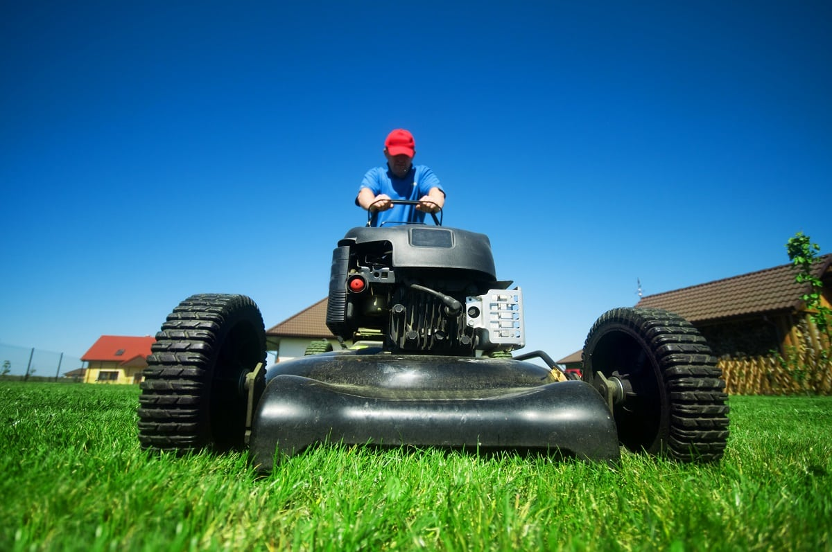 spring lawn preparation tips